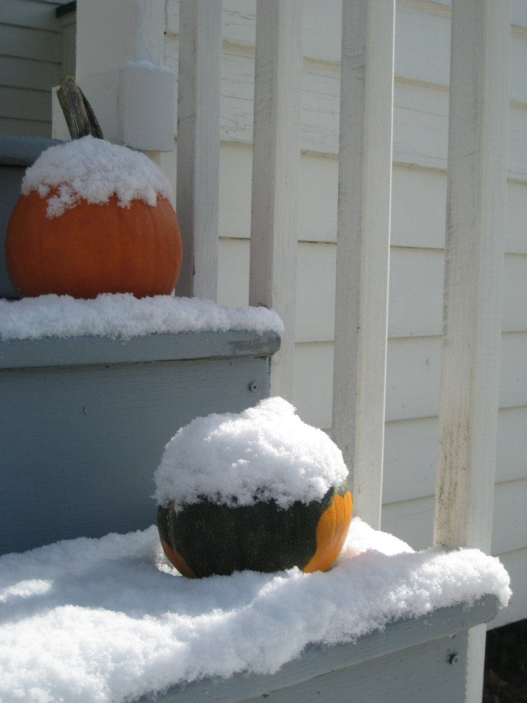 We enjoyed the first snowfall during Philip's fall break...